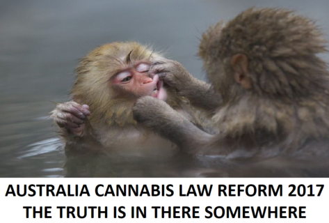 CANNABIS TRUTH.png