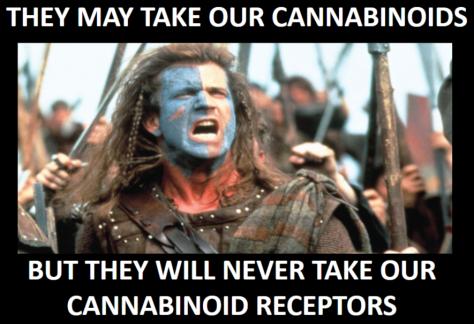 mel gibson cannabinoid brave heart cannabis.png